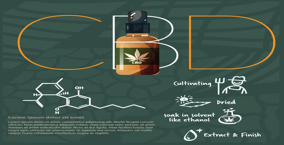 how cbd is made