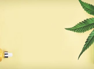 CBD Tinctures: A Comprehensive Guide for Beginners