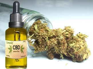 A Beginner's Guide To CBD Oils: 5 Things To Know