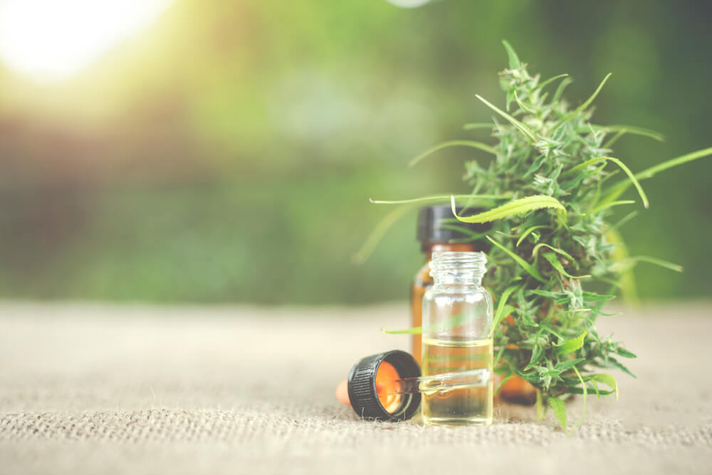 Former Rugby Player Reflects on Starting a CBD Business