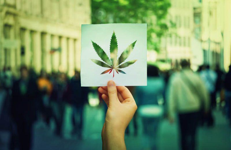 Mark Meadows Anti-Cannabis