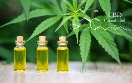 FDA Issues Long-Awaited CBD Update