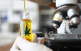 New Cannabinoid Research Lab Coming to Colorado State University