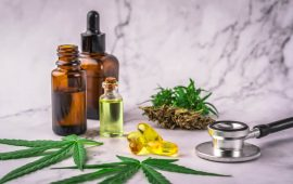 CBD Bioavailability: A Quick Intro