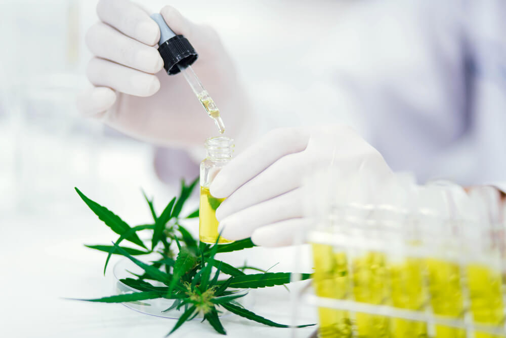 CV Sciences Announces Publication of Two Research Studies Demonstrating the Health Benefits and Safety of Its CBD Products