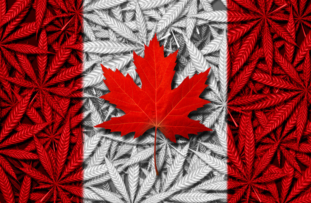 Popular cannabis products in Canada