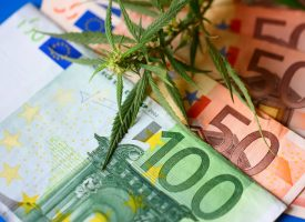 Cannabis, weed to be smoked, THC and CBD - marijuana flower and hashish drug illegal with Euro bills money. Smoke addiction marijuana
